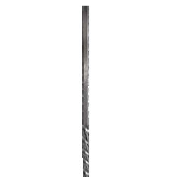 SPN-01